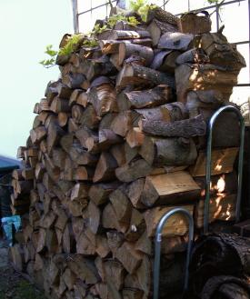 Ideal zur Lagerung von Baumabschnitten: Die Kaminholz-Außenlagerung. Ungeziefer und Holzwürmer sind dort eher unproblematisch. Das Holz trocknet übrigens auch ohne Abdeckung.